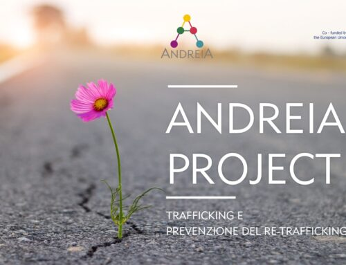 ANDREIA PROJECT